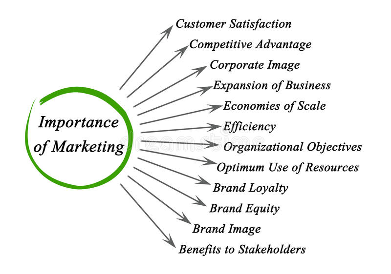 market research business plan example