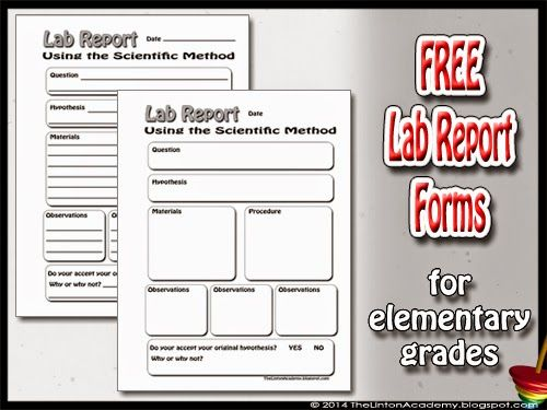 example of method section of a lab report