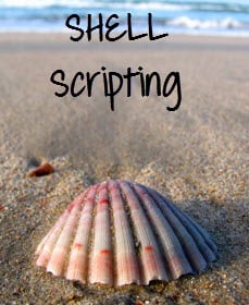 bash shell script while loop example
